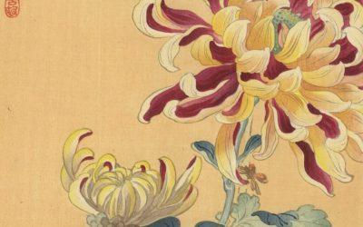 Chrysanthemum in Japanese tattoos – Tattoo Life