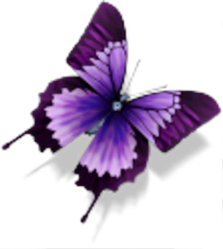 TattooMix Dövmecim kelebek dövmeleri (8)