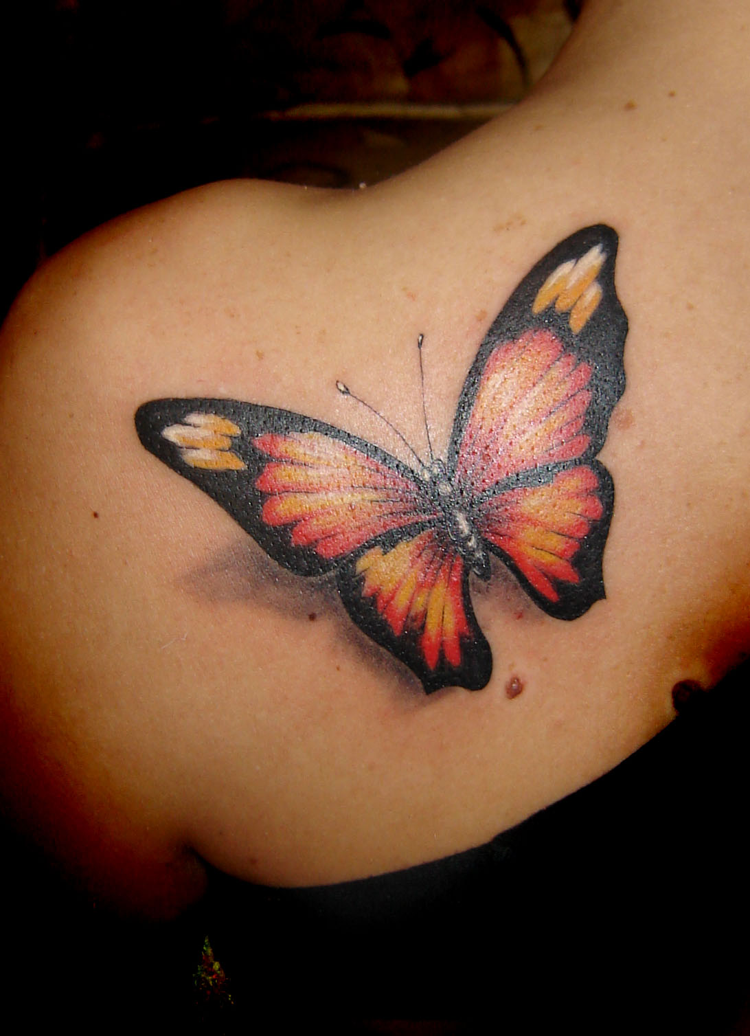 Black Meaning Butterfly