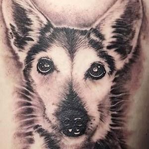 wolf portrait tattoo