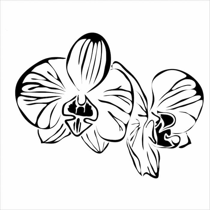 Orchid Flower Tattoo Meaning Kayaflowerco