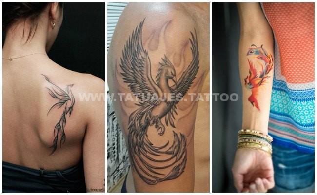 Tatuajes De Ave Fenix Significado