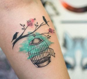 Aves afuera de jaula