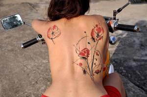 Flores de Amapola y Líneas