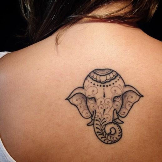 Elefante hindú by Pedro Contessoto