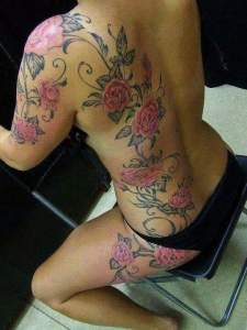 Enredadera de Flores Rosas