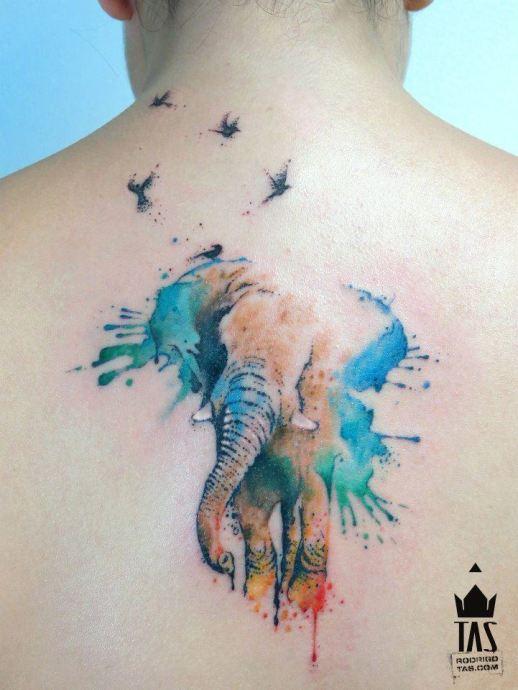 Elefante y Aves en Acuarelas by Rodrigo Tas