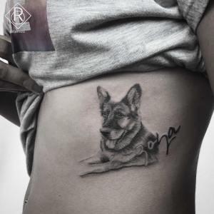 Perro y Nombre