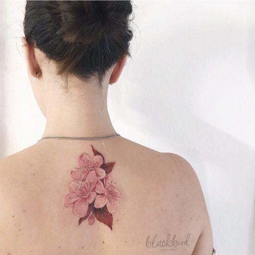 Flores de cerezo por Luiza Oliveira