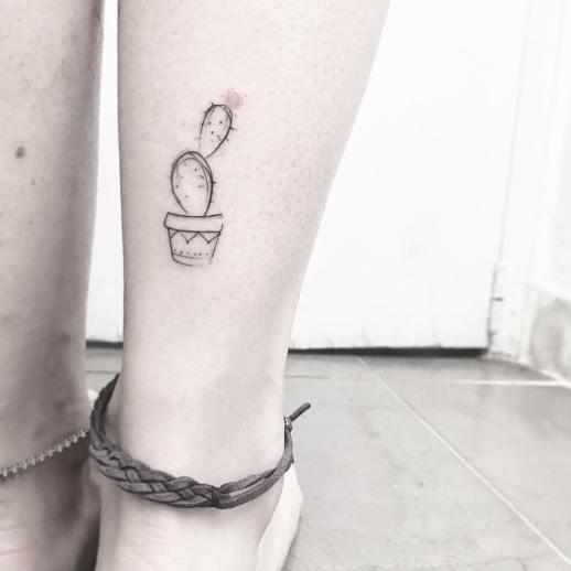 Cactus por Mònica Sampietro