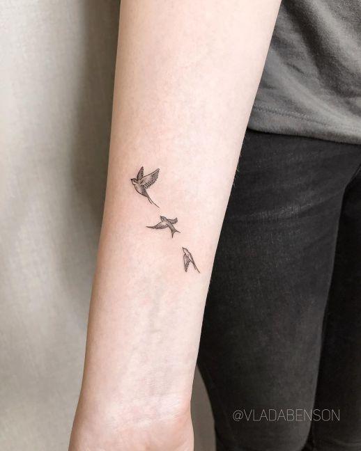 Aves por Vlada Benson