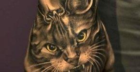 Gato tatuado en el puño