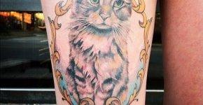Tatuaje de retrato de gato