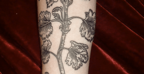 Tattoos Liam Sparkes