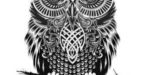 Diseño tatuaje búho