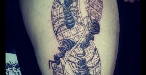 Tatuajes Escher