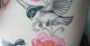Birds tattoo for women