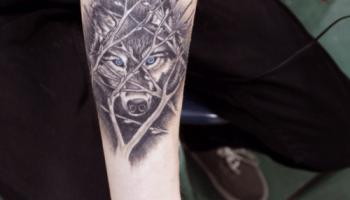 Tatuajes De Lobos Tatuajesxd