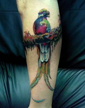 Quetzal colorful tattoo