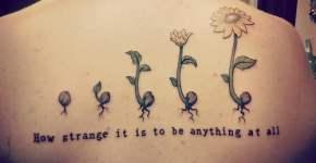 Flor creciendot atuaje