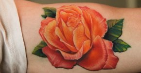 Tatuaje rosa brazo