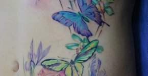 Tatuaje mariposas abdomen