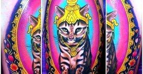Tatuaje gato hindú