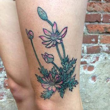 Tatuaje anémona del desierto.