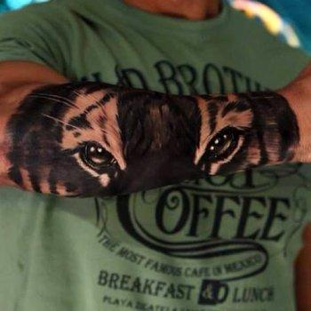 Tatuaje De Ojos De Tigre Tatuajesxd