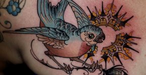 Tatuaje periquito australiano