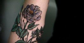 Tatuaje rosa silvestre morada