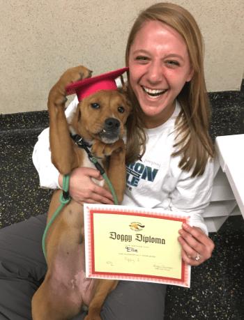 Proud puppy parent!