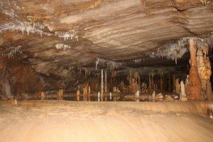 Stalagmiten Buchan Caves