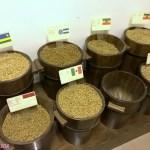 Coffee Museum in Dubai, UAE
