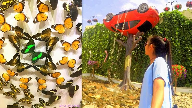 butterfly garden, dubai miracle garden