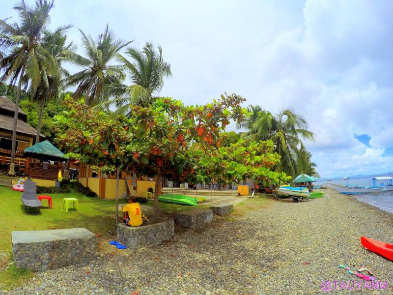 day trip to anilao beach club, filipino blogger, dubai blogger, philippines vlog