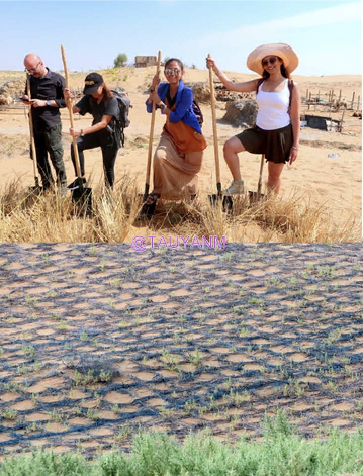 Jin Sha Island in Ningxia Zhongwei China Lavender Fields, dubai blogger, dubai influencer, filipino blogger, dubai travel blogger, filipino travel blogger, filipino influencer