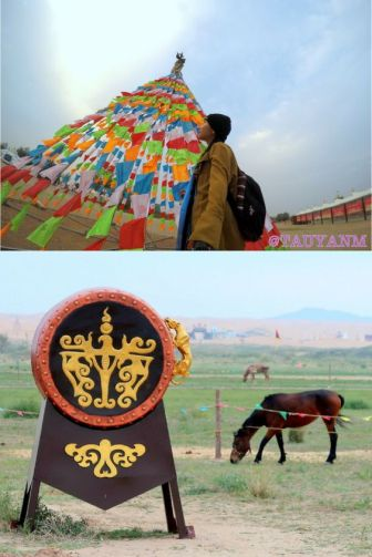 tonghu grassland, yinchuan ningxi china, ningxia, travel blogger, dubai blogger, influencer