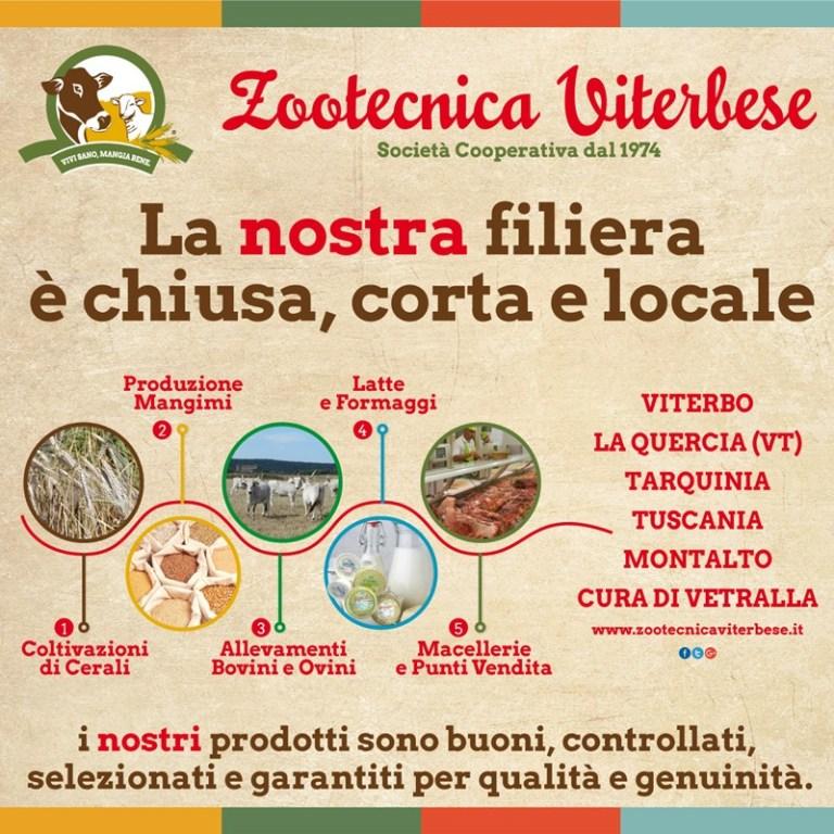Coda alla Vaccinara - Zootecnica