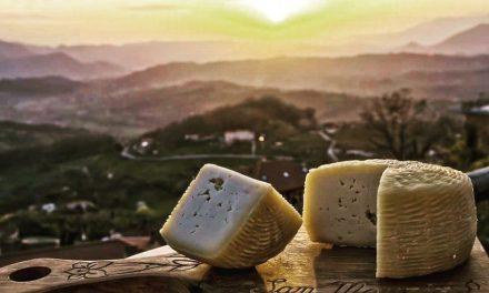 DOL e i suoi produttori: Il Pecorino di Picinisco DOP dell'Agricola San Maurizio