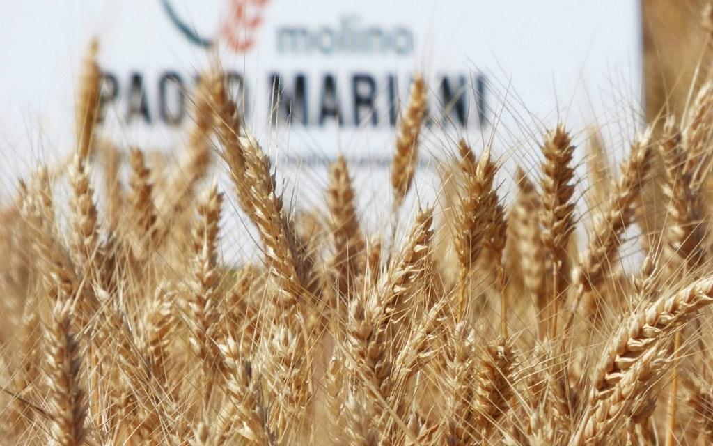 Molino Paolo Mariani, Main Sponsor Maritozzo Day
