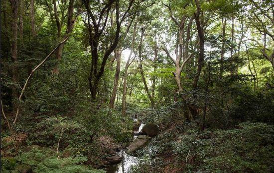 Meiji 2