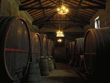 Escursione Etna e Wine tasting