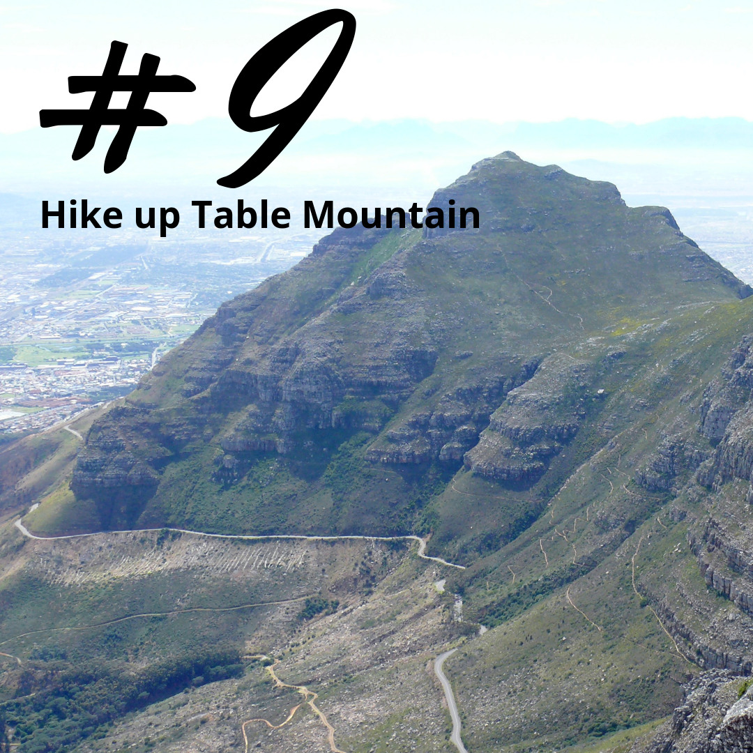 Hike up Table Mountain