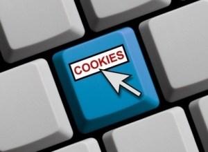 Siti web: entro giugno dovranno essere a norma con i cookie