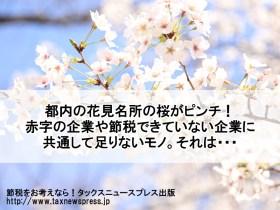 都内の花見名所の桜がピンチ!赤字の企業や節税できていない企業に共通して足りないモノ。それは・・・