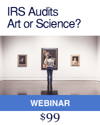 IRS Audits Art or Science Course