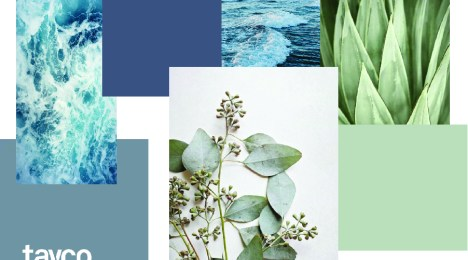 Curated Colour Palettes Sure to Inspire!