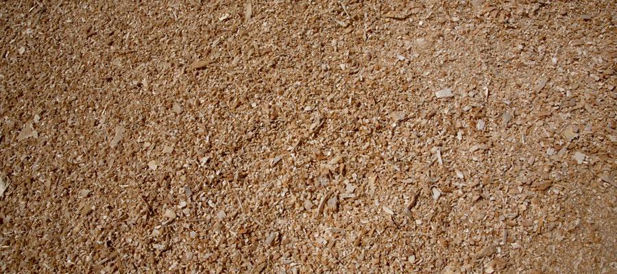 sawdust01