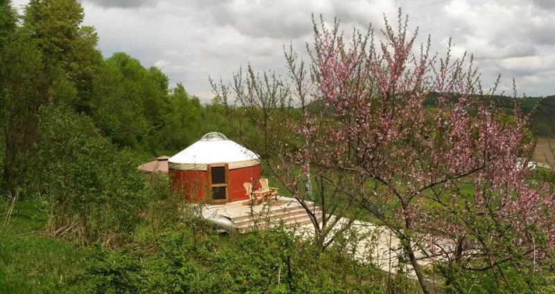 Yurt in NY.